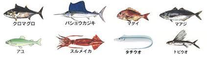 春が旬な魚3