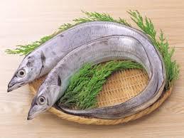 春が旬な魚4たちうお