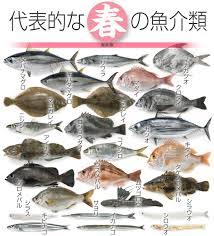 春が旬な魚